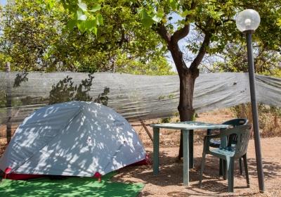 Campeggio Affittacamere Oasi Park Falconara